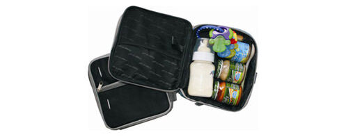 Fridge-to-go cooler bags available from Haggus & Stookles