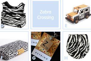 Baby Zebra Styles