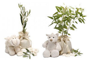 Give a tree as a newborn present