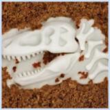 fred-fossil-food-cupcake-mo