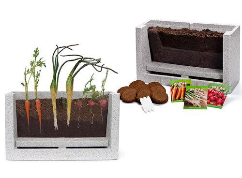 See-through vegetable garden