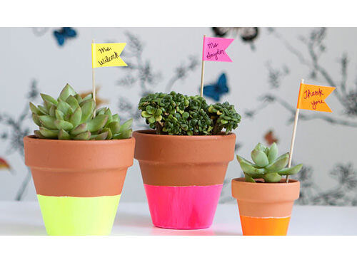 Neon-dipped pots