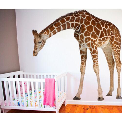 Real Life Safari Animal Wall Decals