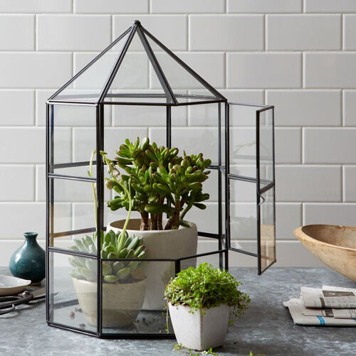 9 Lush Terrariums How To Make Your Own