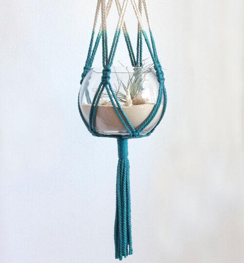 Macrame hanging terrarium