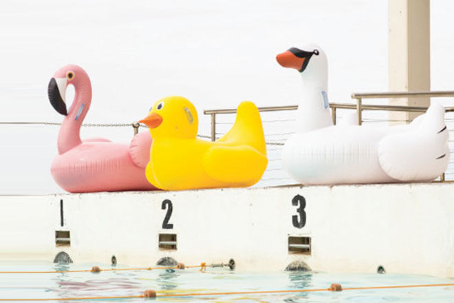 Sunnylife Inflatable Pool Toys