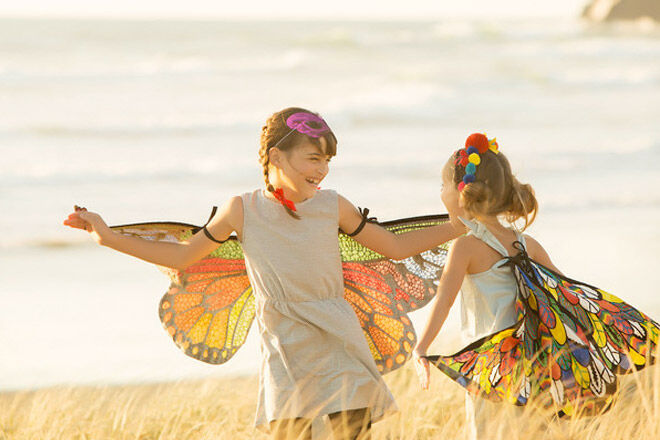 Seedling. Design your own beautiful butterfly wings
