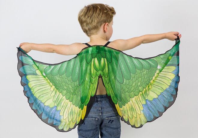 boy-green-wings