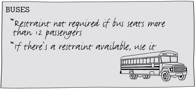 Car restraint rules: buses