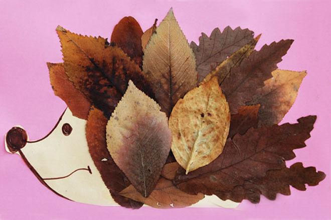 Krokotak-Fall-Leaf-hedgehog