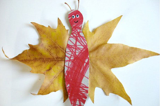 No-Time-For-Flashcards-Leaf-Butterfly