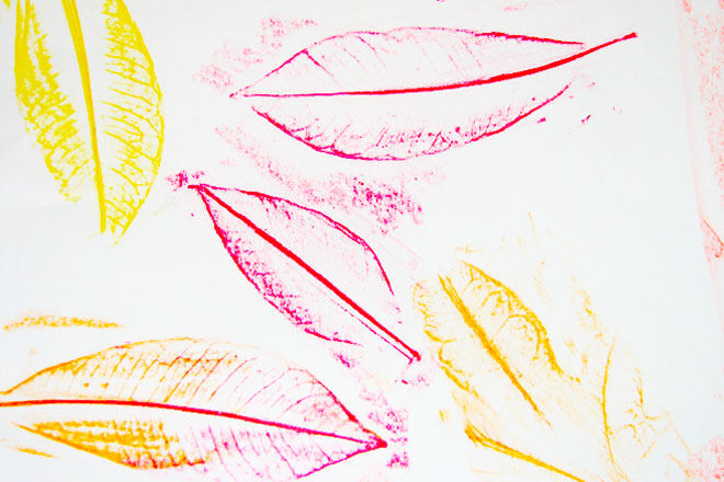 Sixty-Second-Parent-Leaf-Rubbings