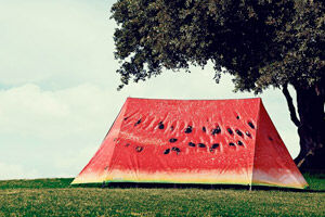 Field Candy Tents