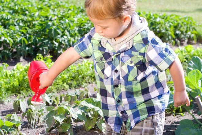 kid friendly garden ideas