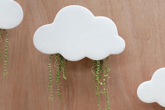 Cloud planter