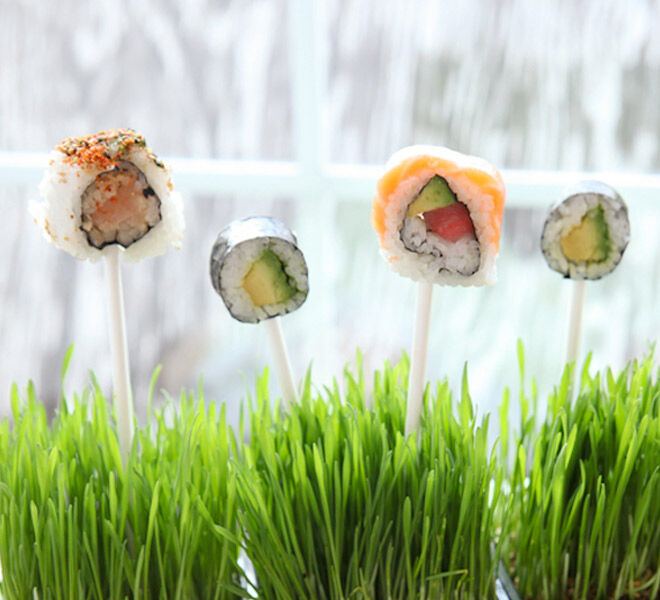 Simple sushi on a stick