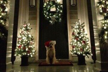 stunning christmas decor inspirations