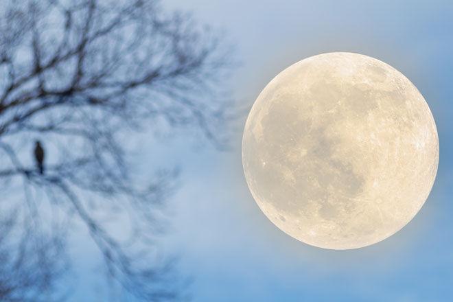 Pregnancy myths full moon