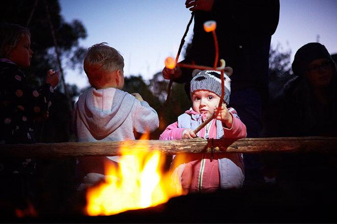 'Wild Nights' School Holiday Activities at Werribee Open Range Zoo