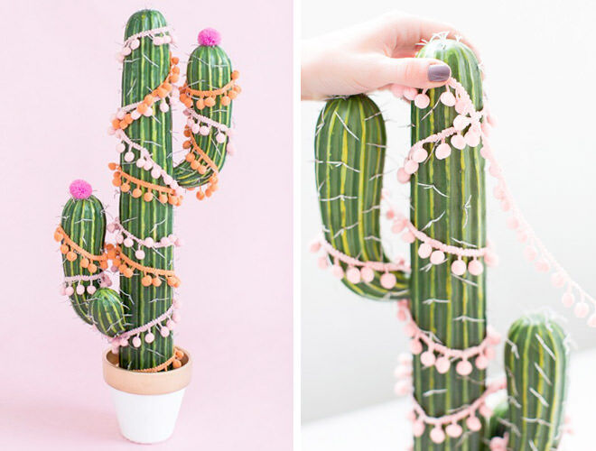 Add a little fun to Christmas with a Christmas tree cactus!