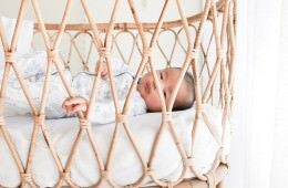 Down to the Woods Rattan Wee Poppet Bassinet