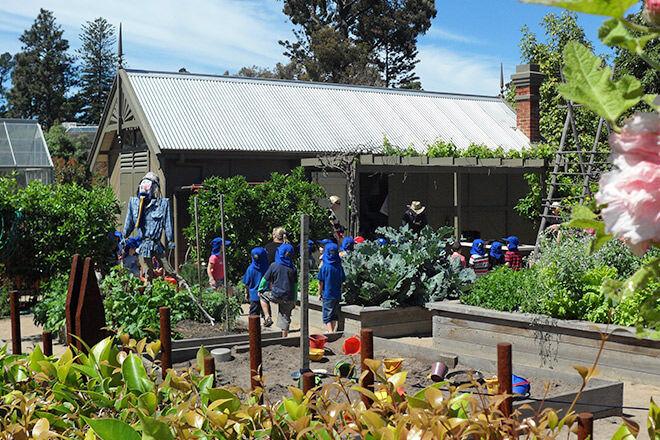 Ian-Potter-Children's-Garden_Image_7