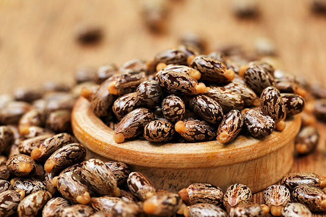 Ancient Egyptians used castor oil to start labour