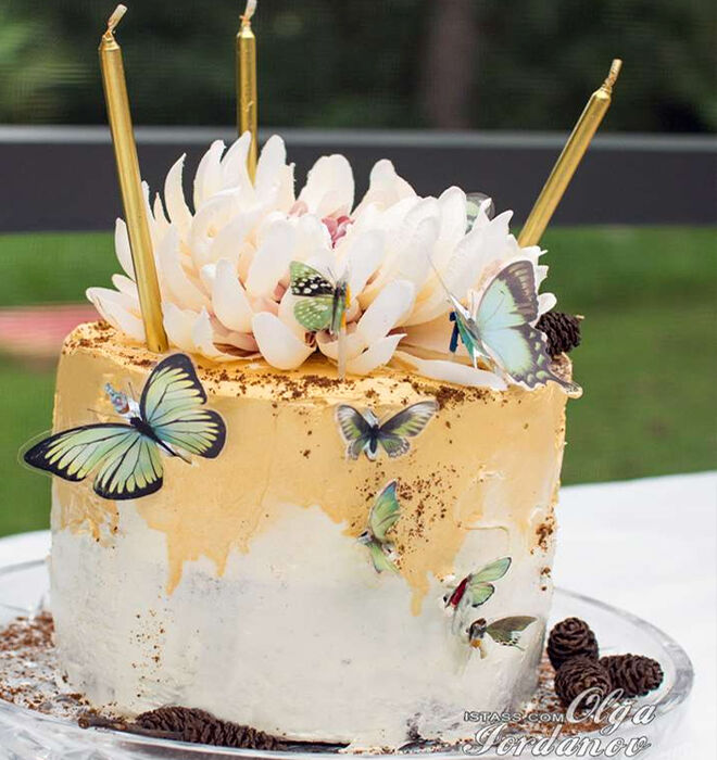 Fairy-Butterfly-Birthday-Cake