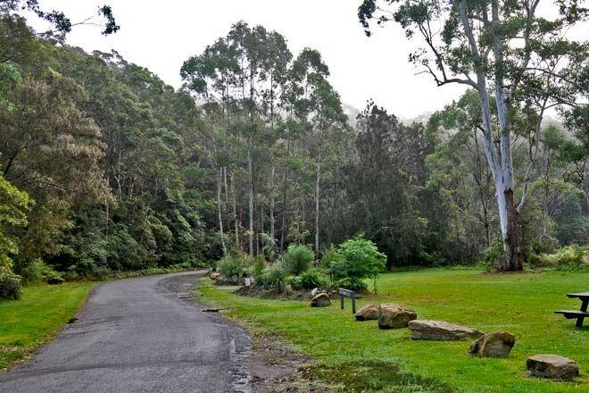 Lane-Cove-National-Park
