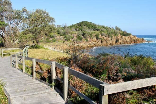 Mimosa-Rocks-Walking-Track