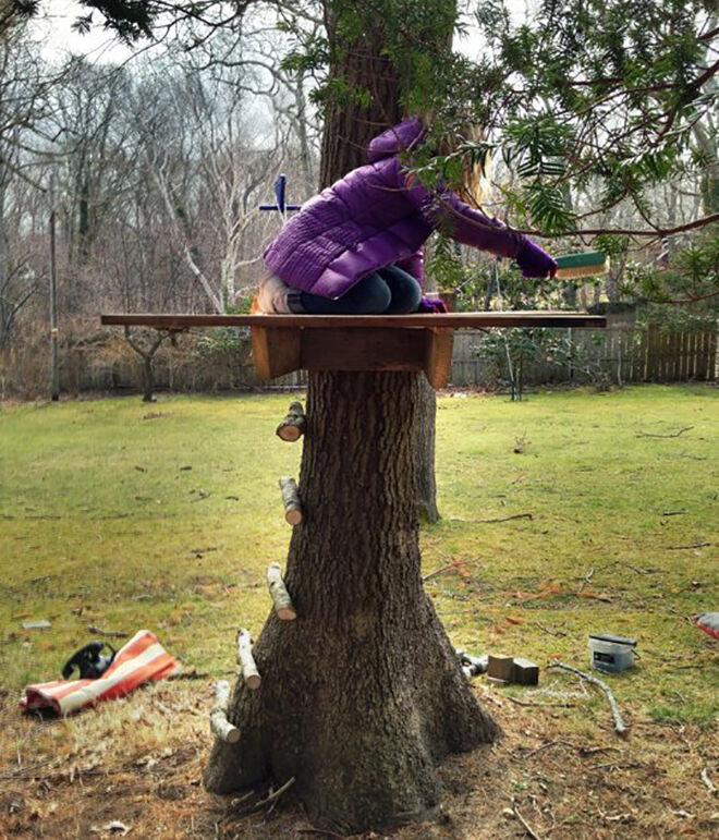 Tree platform. Outdoor play areas.