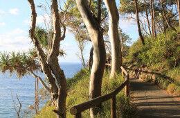 Noosa national park walk pram