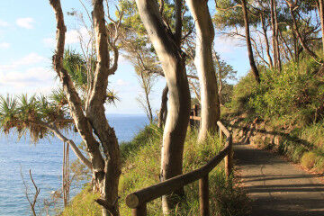 Noosa national park walk pram