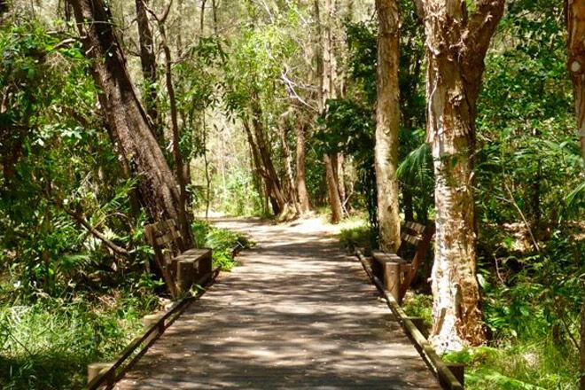 Brisbane bush walk pram