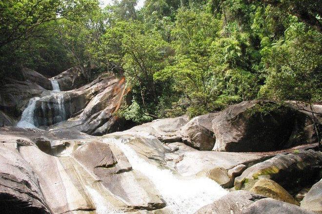 Wooroonooran National Park bush walk
