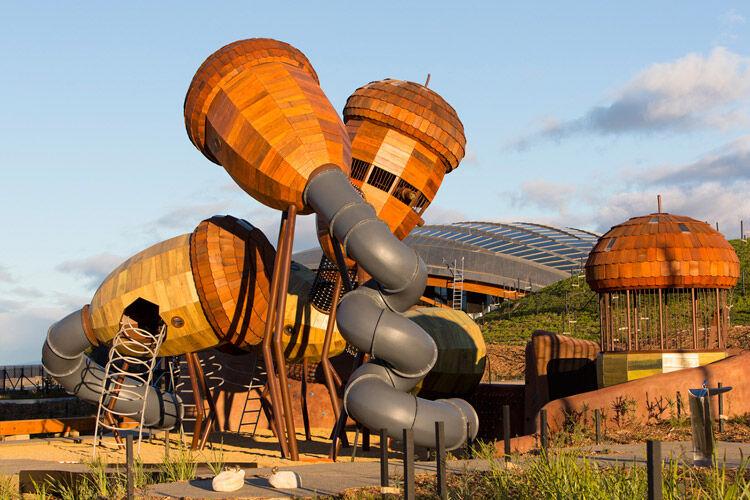 Canberra playground nature