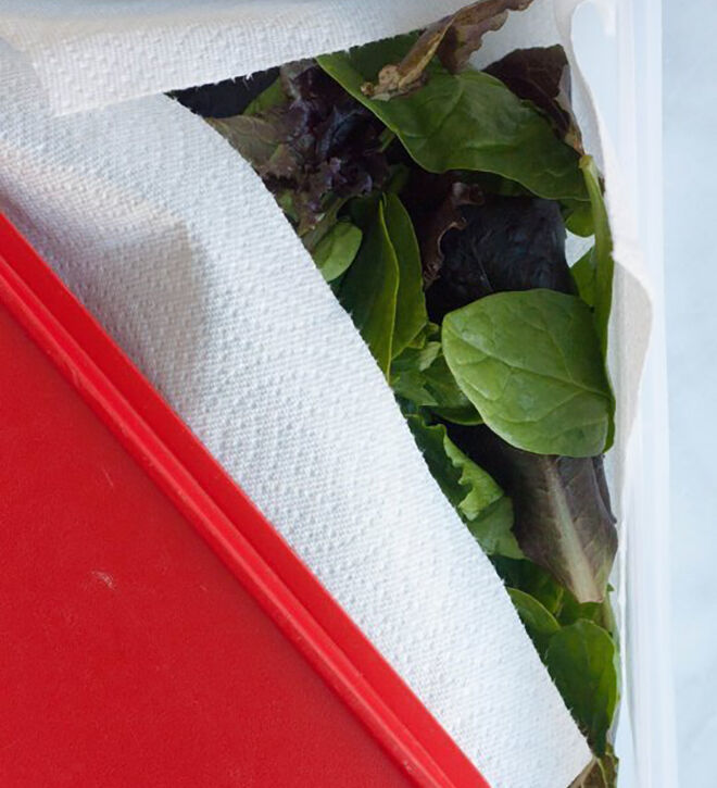 Lettuce in paper towel. How to keep your fruit and vegetable fresher for longer.