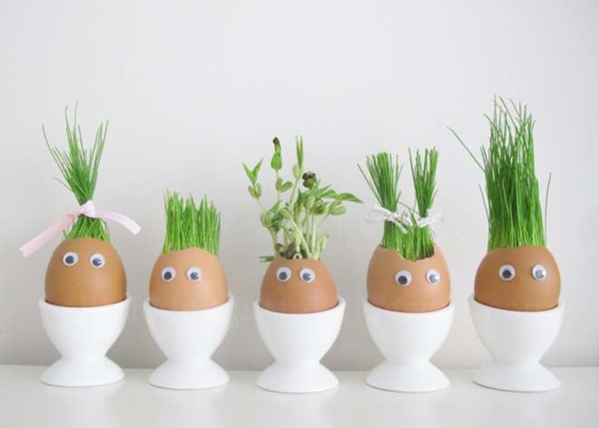 Eggshell planting. Earth Day activities with your kids.