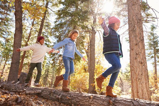 nature-play-balance-on-log