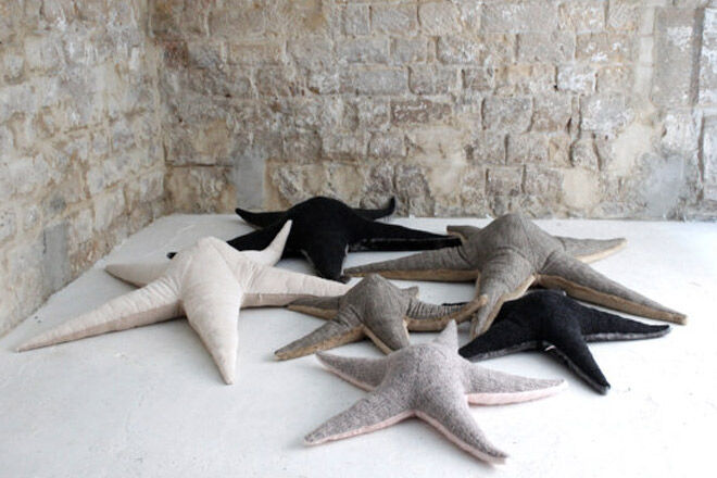 Big-stuffed-starfish