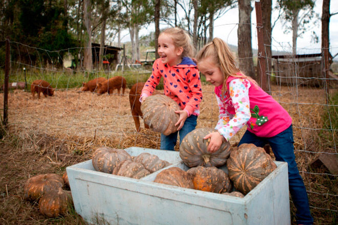 Queensland kids farm animals