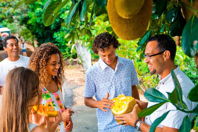 NSW kids fruit farm