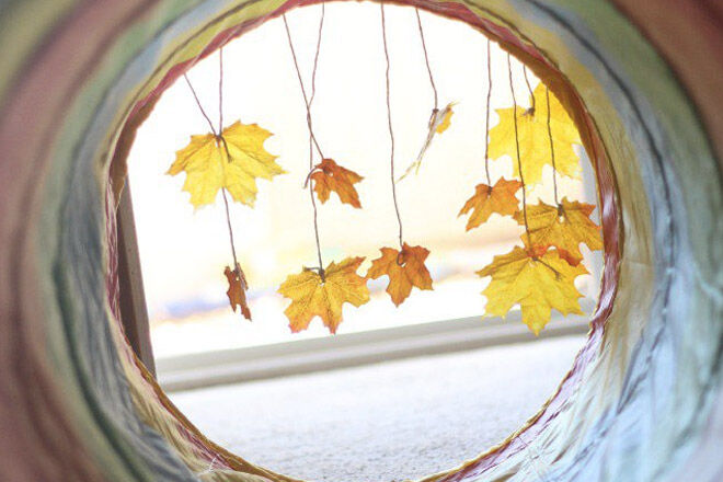 autumn-activities-possible-header