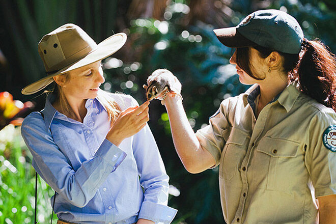 Queensland Gold Coast kid animal holiday