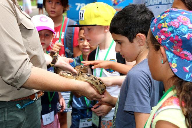 eco ranger Queensland Gold Coast kid