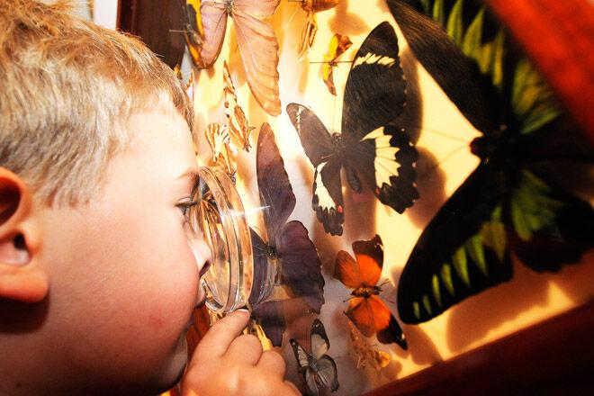 Brisbane kids Qld holiday exhibition