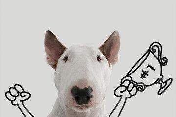 Instagram art dog