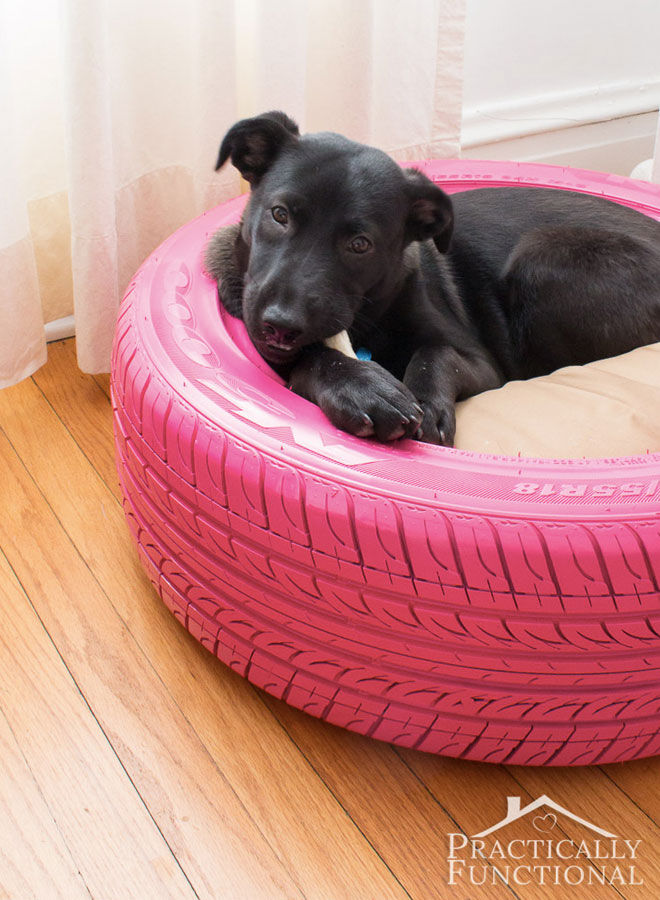 Re-use-tyre-dog-bed