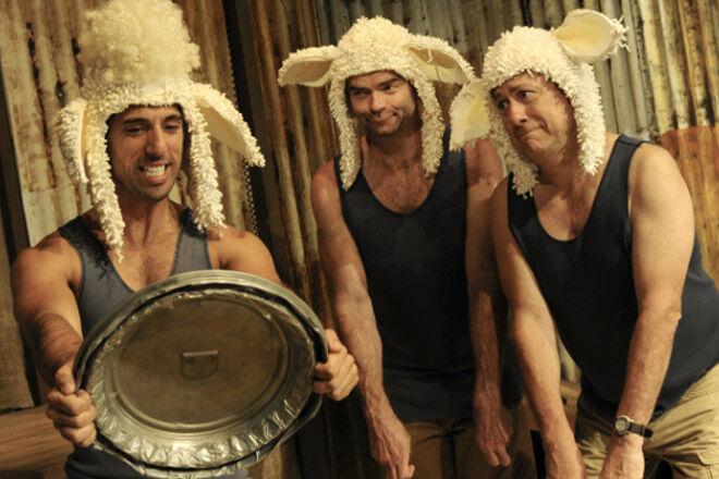 Sydney-Pete-the-Sheep