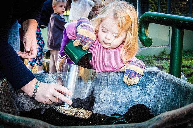 Ku-ring-gai Wildflower Gardens Bush Kids. July School Holiday Activities in Sydney